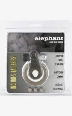 Penisringe Cock & Ball Ring Elephant